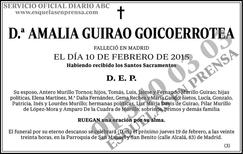Amalia Guirao Goicoerrotea